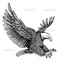 Buy bald eagle by namistudio on GraphicRiver. bald eagle in details (open with or above, coreldraw) Vine Tattoos, Tattoos Skull, Celtic Tattoos, Tribal Tattoos, Sleeve Tattoos, Bald Eagle Tattoos, Wolf Tattoos, Ship Sketch, Eagle Drawing