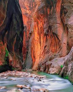 The Narrows, Zion, Utah   Can't wait to go!!