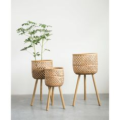 Bungalow Rose Round Bamboo Floor 3 Piece Wicker Basket Set | Wayfair