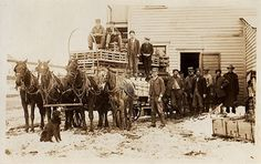 Western Photo, Pioneer Life, Great Lakes Region, Gold Rush, Old West, Genealogy, Cowboys, Westerns, Law