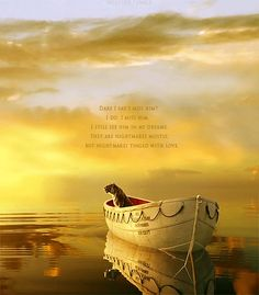 """""""Dare I say I miss him? I do. I miss him. I still see him in my dreams.They are nightmares mostly, but nightmares tinged with love."""" (Life of Pi - Yann Martel)"""