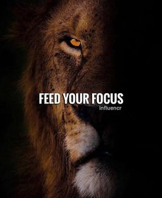 Feed your focus #motivation #success #quotes