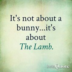 it's not about the bunny, it's about the lamb.