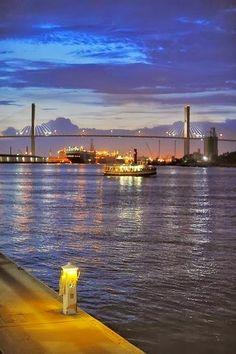 Savannah . -