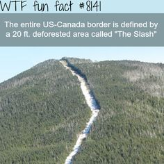 WTF fun facts is a blog for interesting & funniest facts. We post about health, celebs/people,... #ILoveCanada