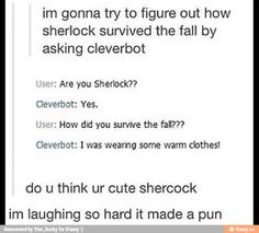 Sherlock cleverbot how did you survive the fall?