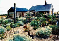 Derek Jarman's Dungeness garden.