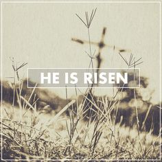 He is Risen Death can't even hold down Jesus Christ.  Photographics by : Travis Silva www.forgivenphotography.com