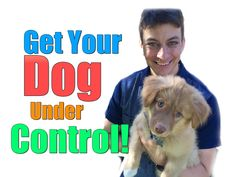 What to Do if Your Dog Just Won't Listen to You Around Guests, Cats, Pup...