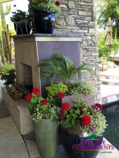 Your garden can be a rich source of relaxation and enjoyment although it may take effort to upkeep. Flowering plants can exhibit impressive displays of blooms that can add color and fragrance to any outdoor space. Maintaining proper care of your garden plants and flowering annuals can allow you to enjoy prettier and healthier plants that thrive.
