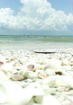 Sanibel Island, Flordia