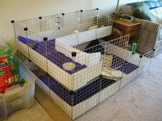 IKEA Kallax Expedit DIY Cage For My Guinea Pigs And Hedgehog It