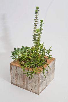 re-Beam Planter with Succulent Arrangement. $45.00, via Etsy.