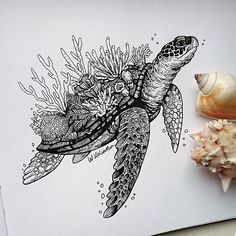 Sea Turtle and coral. Black and White Animal Ink Drawings. Click the image to see more of Weronika Kolinska's work.Sea Turtle and coral. Black and White Animal Ink Drawings. Click the image to see more of Weronika Kolinska's work. Ink Drawings, Cute Drawings, Animal Drawings, Drawing Sketches, Sea Turtle Drawings, Realistic Drawings Of Animals, Sketches Of Animals, Sea Turtle Tattoos, Sea Life Tattoos
