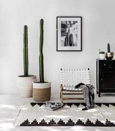 Cactus & Sky | Pampa Series | Victoria Aquirre | Photo Print | NZ | Indie Home Collective