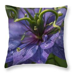 "Nigella Damascena 3 Throw Pillow 14"" x 14"" by Mo Barton"