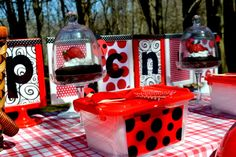 "Photo 1 of 23: Ladybugs / Picnic ""Spotty Dotty Ladybug Picnic"" 