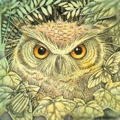 """""""Eyes of the Forest"""", Suzanne Gyseman Drawing Painting Images, Scary Birds, Art Visage, Owl Artwork, Owl Illustration, Paper Owls, Owl Pictures, Spirited Art, Wise Owl"""
