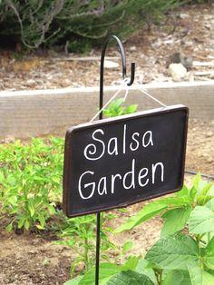 Welcome to my salsa garden!