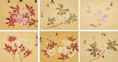 桜満開の季節にぴったり!29種もの桜を写生した江戸時代の絵師 坂本浩然による「桜花譜」 – Japaaan 日本文化と今をつなぐ
