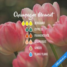 Champagne Moment -  Bergamot, Cypress, Frankincense, Grapefruit, Ginger, Ylang Ylang
