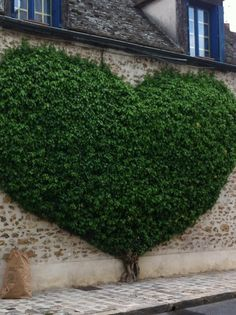 A little heart tree in front of a cottage with a cobblestone walkway.  Fabulously quaint!