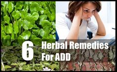 6 Effective Herbal Remedies For ADD