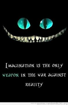 """imagination is the only weapon in the war against reality"""