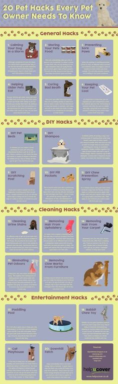 General Hacks #doginformation #doghacks
