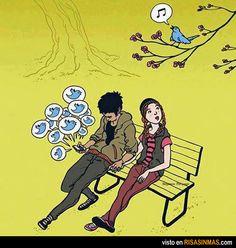 Twitter o no Twitter, disfruta, el pájaro, la naturaleza