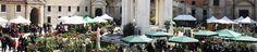Ancona Flower Show: un weekend total green!