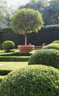 Boxwood Garden via Flickr