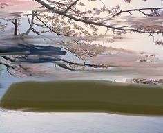 SANDRA KANTANEN: LANDSCAPES  Tokyo, agosto 2009 - Shiseido Gallery