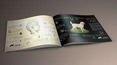Infografías realizadas por El Diseñosaurio para la Fundación Canis Majoris @f.canismajoris . . #FundacionCanisMajoris #throwbackthursday #infografia #diseñografico