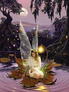 Fairy girl on leaf Fairy Pictures, Angel Pictures, Beautiful Fantasy Art, Beautiful Fairies, Fairy Wallpaper, Mobile Wallpaper, Unicorn And Fairies, Angels And Fairies, Fantasy Kunst