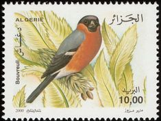 Birds on stamps: Algeria Algerije Algérie