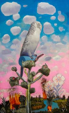 New Blood Art   Budgie by Gavin Lavelle   Buy Original Art Online   Artworks by Emerging Artists for Sale