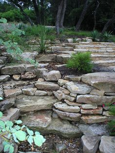 Stone used to make great use of sloped yard.