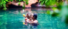 Relax in the geothermal hot pools and be pampered at the day spa at The Lost Spring, in Coromandel. Specimen Trees, Crow's Nest, Beach Road, Spa Day, The Locals, Pools, Road Trip, Lost, Spring
