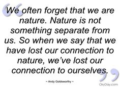 we-often-forget-that-we-are-nature-andy-goldsworthy.jpg (480×350)
