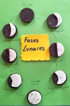 I think this is a great activity for students to do to demonstrate their knowledge of the phases of the moon. I would have each individual student do their own moon phase cycle with Oreos, like so. Science Fair, Science Lessons, Teaching Science, Science For Kids, Social Science, Science And Nature, Science Activities, Science Projects, Science Experiments