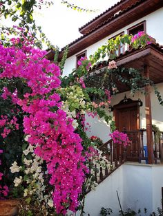 Front door flower pots are the best way to show your love of plants. See the best flower pot ideas! Bougainvillea, Beautiful Interiors, Beautiful Homes, Beautiful Places, Front Door Planters, Fashion Show Invitation, Best Front Doors, Elegant Centerpieces, Flower Pots