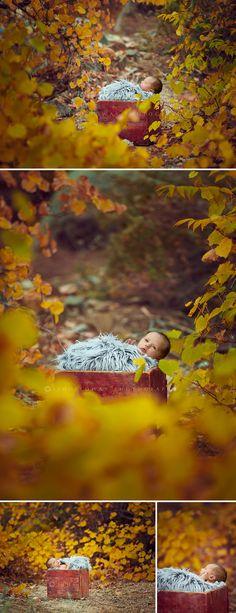 My Sweet Autumn Baby {Kingman Arizona Newborn Photographer | Las Vegas Newborn Photographer}