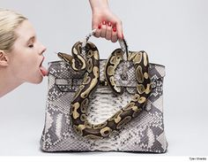 Tyler Shields -- Snake on a Birkin ... Goes Face-to-Face with a Model (VIDEO + PHOTOS) - http://blog.clairepeetz.com/tyler-shields-snake-on-a-birkin-goes-face-to-face-with-a-model-video-photos/