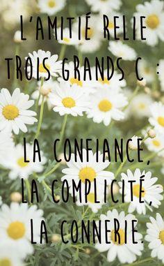 Citation  L'amitié relie trois grands C :  La confiance La complicité La connerie