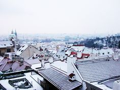 Prague in Christmastime is magical! #prague #praha #christmas #xmas #winter #wintertravel #czechrepublic #snow #praga #travel #travelguide