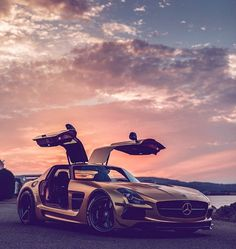 Mercedes SLS Gullwing