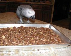 Homemade Parrot Granola Recipe: