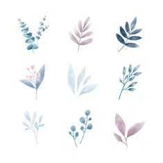 Watercolor Leaves stock photos and royalty-free images, vectors and illustration… - FABRIC PAINTING Watercolor Leaves, Watercolor Landscape, Watercolor Cards, Watercolor Illustration, Watercolour Painting, Floral Watercolor, Painting & Drawing, Watercolor Animals, Watercolor Background
