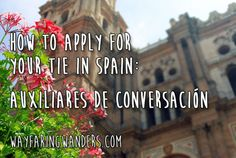 How to Apply for your TIE in Spain: Wayfaring Wanders